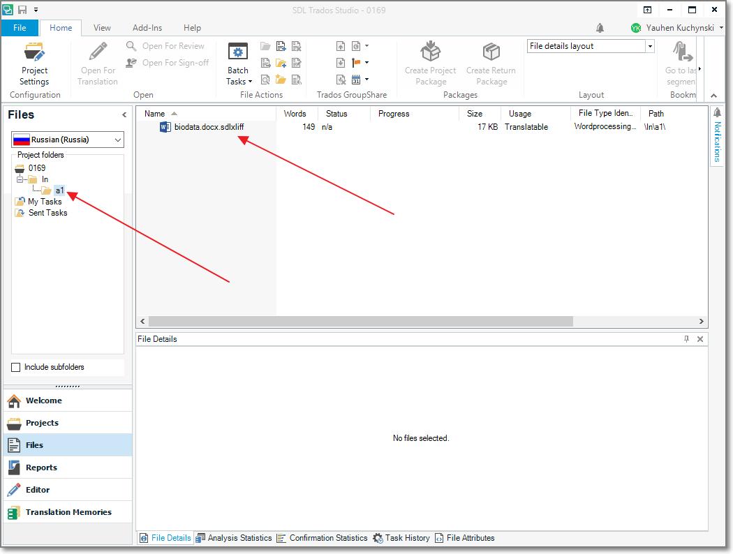 BaccS and SDL Trados integration with translation management system
