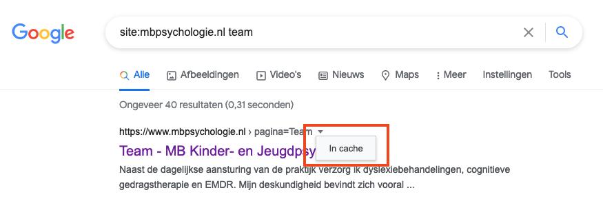 Zoek gecachete pagina in Google